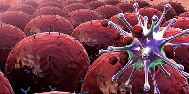 Kadınlarda görülen kanserlerin yüzde 5'ini o kanser oluşturuyor