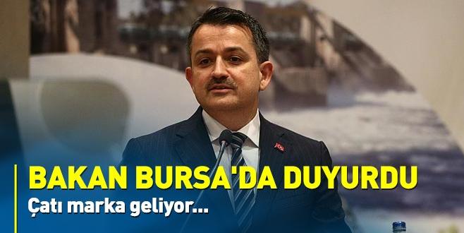 Bakan Bursa'da duyurdu: Çatı marka geliyor