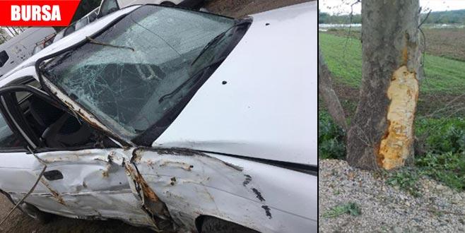 Kontrolden çıkan araç ağaca çarptı: 1 ölü