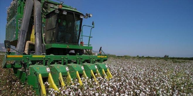 Çiftçi ürünlerini kooperatiflepazarlayacak