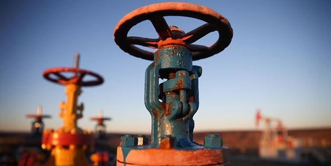 Petrol devlerinin karı azaldı