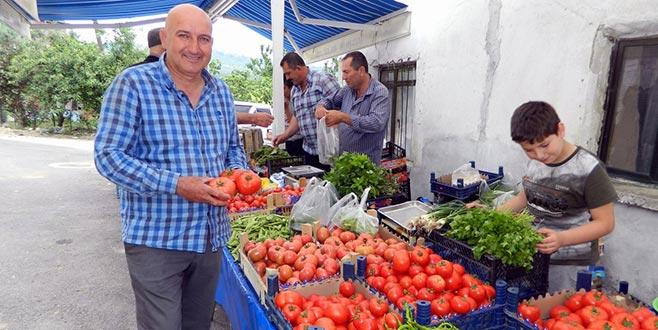 Mürsel Mahallesine organik pazar