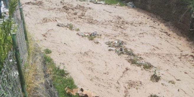 Ağrı'da aşırı yağışlar 4 can aldı