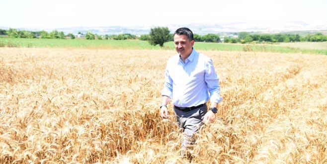Buğday için iyi bir fiyat verdik