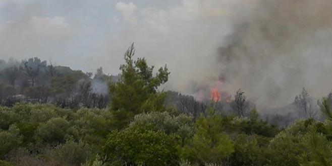 Turizm şehrinde bir yangın daha