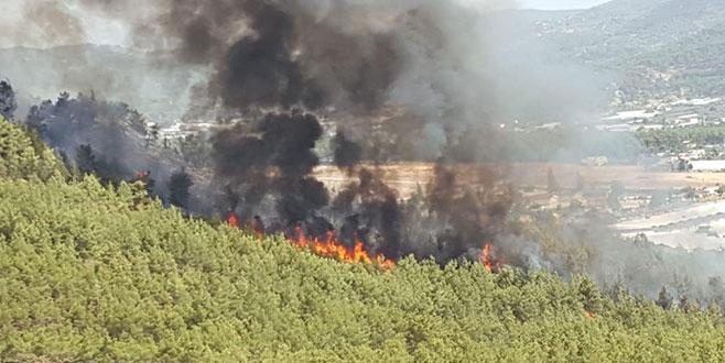 Muğla'da 24 saatte üçüncü yangın