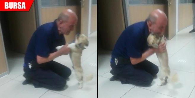 Çalınan köpek sahibine böyle kavuştu! Duygu dolu anlar