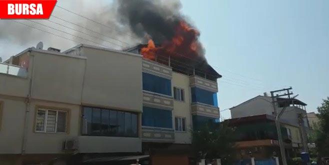 3 katlı binanın çatısı alevlere teslim oldu