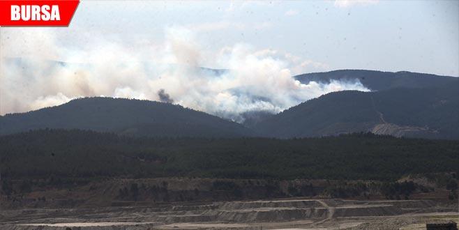 Orman yangını tamamen kontrol altına alındı