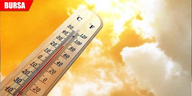 Yazın en sıcak günü
