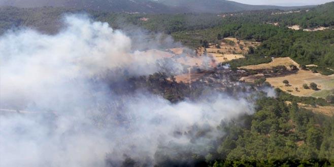 Bakan açıkladı: Yangın nedeniyle bir köy boşaltılıyor