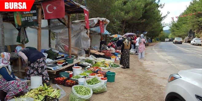 Yol kenarında satıyorlar! Hem organik hem ucuz...