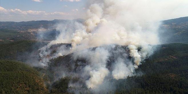 Orhaneli'ndeki yangınla ilgili çarpıcı açıklama