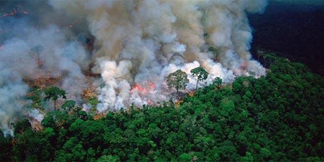 7 ülke 'Amazonlar' anlaşması imzaladı