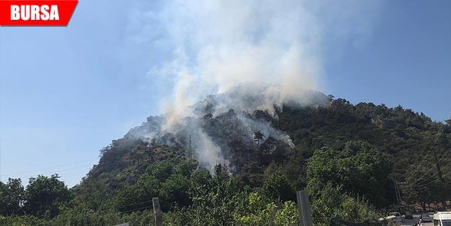 2 ay önceki orman yangınıyla ilgili gözaltı