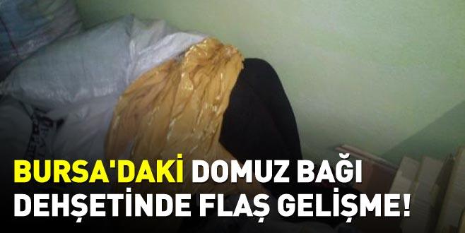 Bursa'daki domuz bağı dehşetinde flaş gelişme!
