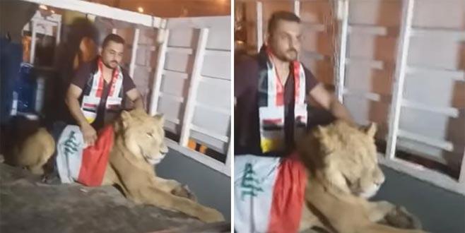 Köpekle müdahaleye aslanla misilleme