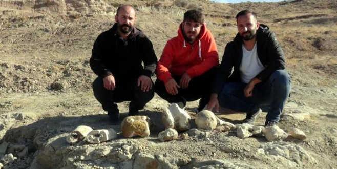 7,5 milyon yıllık yeni fosil bulundu