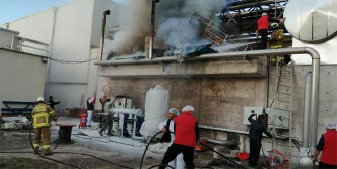 Süt fabrikasında yangın