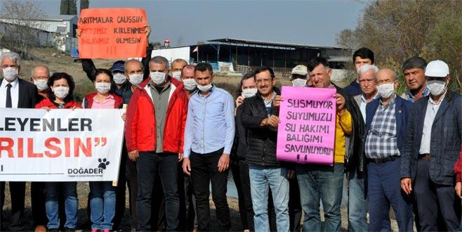Bursa'daki balık ölümlerine maskeli protesto