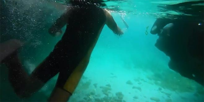 Denizin altında saklı güzellik