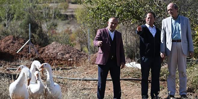 Türkiye'de ilk defa Uludağ eteklerinde üretilecek
