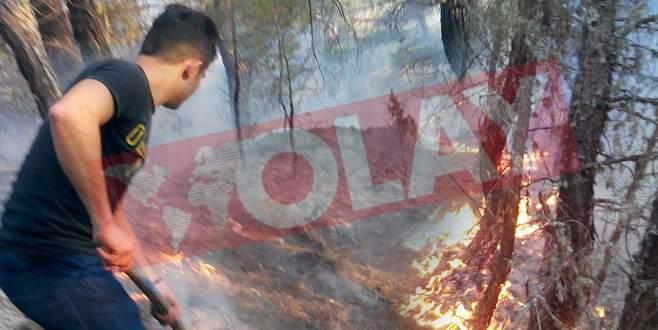 Keles'te orman yangını