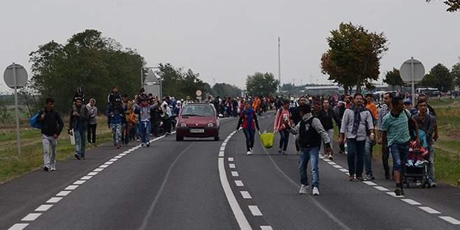 Sığınmacılar Viyana'ya doğru yürüyüşe geçti