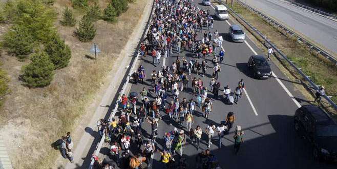 Sığınmacılar kararlı