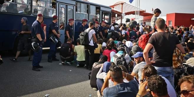 Sığınmacılar Slovenya'da