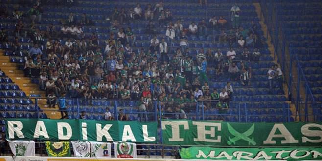 250 Timsah Kadıköy'de