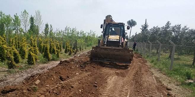 Zeytin hasadı öncesi arazi yolları bakımı