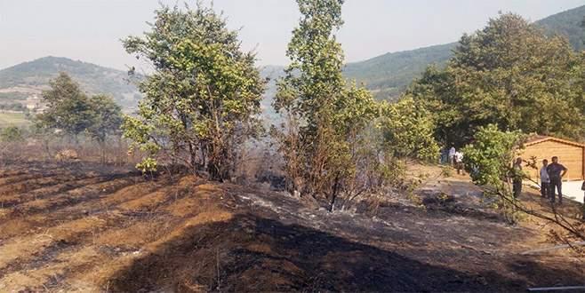 Bursa'da 3 hektarlık ormanlık alan yandı