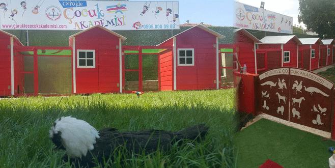 Bursa'daki bu okulda minikler hayvanlarla iç içe...