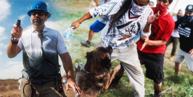 Kızılderililere  köpeklerle saldırı