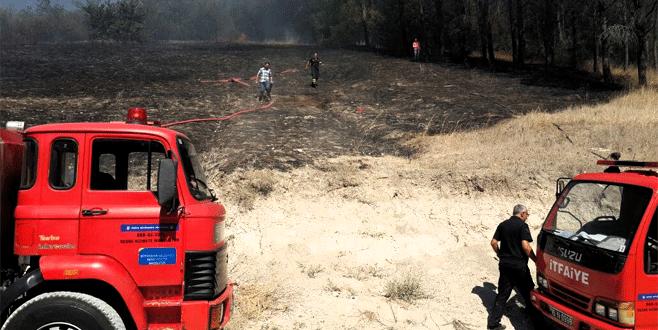 Çakmakla oynayan çocuklar az kalsın ormanı yakıyordu