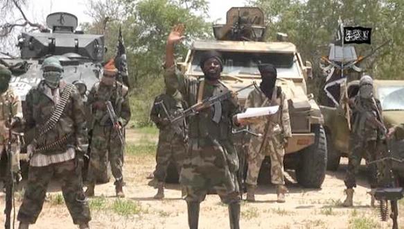 Boko Haram militanları teslim oldu