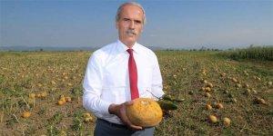 Dolunun vurduğu çiftçiye Bursa Büyükşehir Belediyesi'nden destek