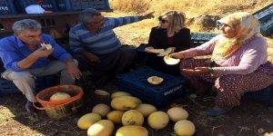 İl Müdürü Kadıoğlu domates ve kavun üreticileri ile bir araya geldi