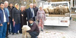 Orhaneli'nde genç çiftçiye destek