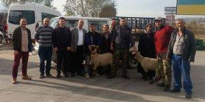 Genç çiftçiye destek sürüyor