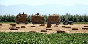 Saman üretimi talebi karşılamıyor