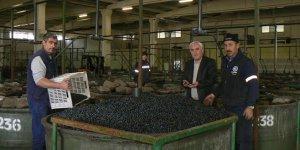 Orhangazi'de zeytin depoları doldu taştı