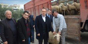 Mudanya'da genç çiftçiye destek