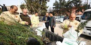 Yenişehir'de fidan dağıtımı