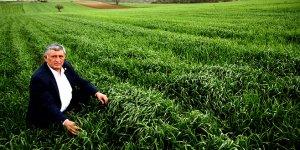 Yenişehirli çiftçi yağmur bekliyor