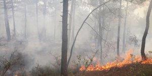 Bursa'da 1 hektarlık orman kül oldu