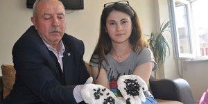 Bursa'da paniğe neden olan böceğin sırrı çözüldü