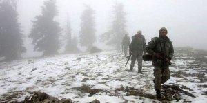 Amanoslar'da PKK'ya büyük darbe