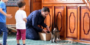 Camide yavrulayan kediye  imam sahip çıktı